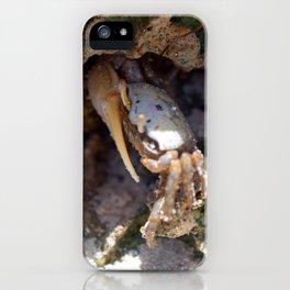 Crab No.3 iPhone Case