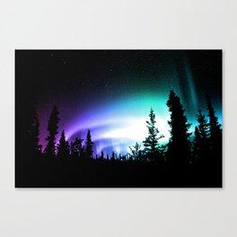 Aurora Borealis Forest Canvas Print