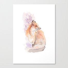 Urban fox Canvas Print