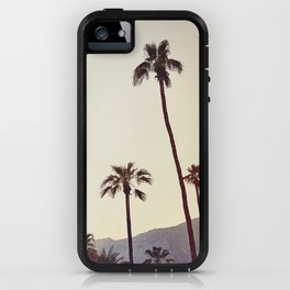 Palm Trees in the Desert iPhone Case
