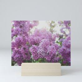 Dreamy Spring Lilacs Mini Art Print