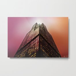 Willis Above Metal Print