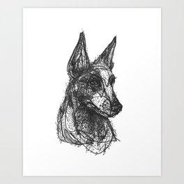 Cattle Dog Art Print