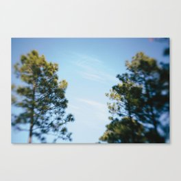The space in between Canvas Print
