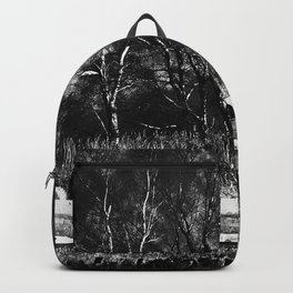 Urban Decay 4 Backpack
