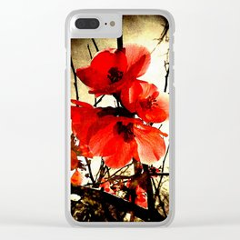 Spring Red 3, Royal Botanical Gardens - Melbourne Clear iPhone Case