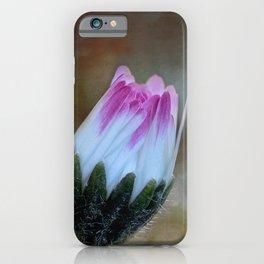 Sleeping Daisy iPhone Case