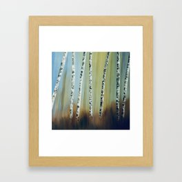 Summer Bir Framed Art Print