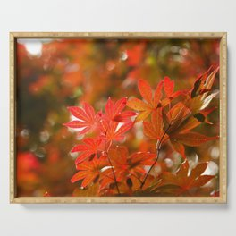 Acer leaves Serving Tray