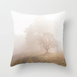 Morning Fog, Shawangunks Throw Pillow