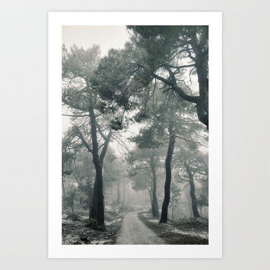 Through the foggy forest Art Print