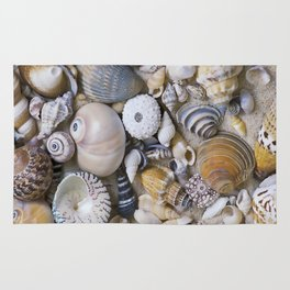 Sea Shell Collection Rug