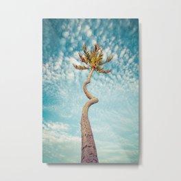 Corkscrew Palm Metal Print