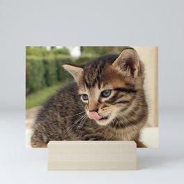 Lick It! Mini Art Print