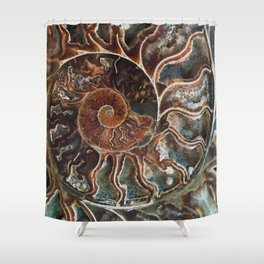 Fossilized Shell Shower Curtain