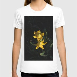 Dew drops on Yellow Glacier Lilies in Glacier National Park Montana Early Morning T-shirt