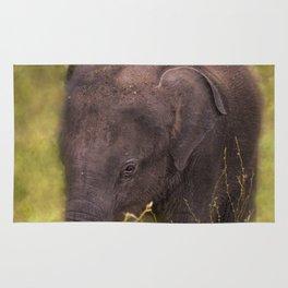 Elephant Baby Rug
