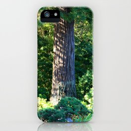 Shadows in the Trees iPhone Case