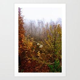 End of November  Art Print