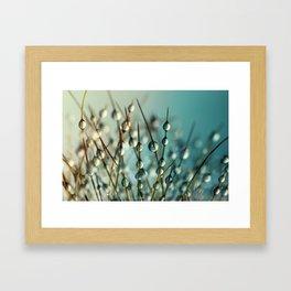 Cactus Craze II Framed Art Print