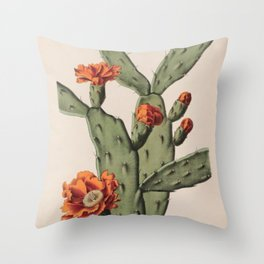 Botanical Cactus Throw Pillow