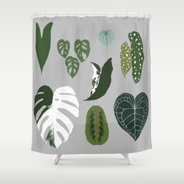 Leaves composition 2 gray background Shower Curtain