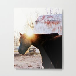 Horse Eclipse Metal Print