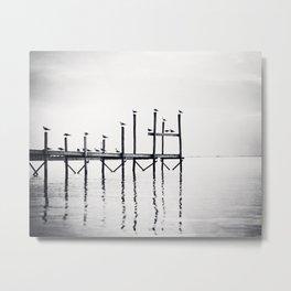 Black and White Coastal Photography, Grey Beach Pier Landscape, Neutral Gray Ocean Birds Seashore Metal Print