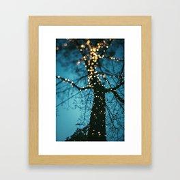 Bokeh tree. Framed Art Print