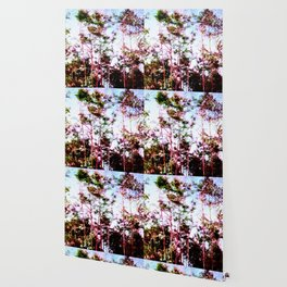 Everglades Noise Wallpaper