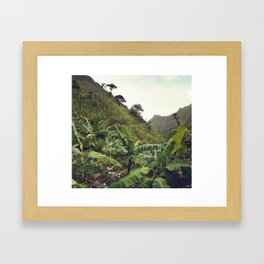 Banana hike Framed Art Print