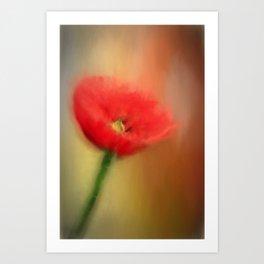 Poppy Elegance Art Print
