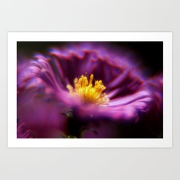 Purple Fire Art Print