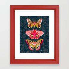 Lepidoptery No. 4 by Andrea Lauren Framed Art Print