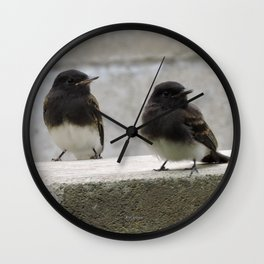 Young Black Phoebes Wall Clock
