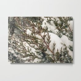 Nantucket Winter #1 Metal Print