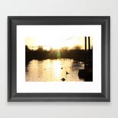 Gold Glow Framed Art Print