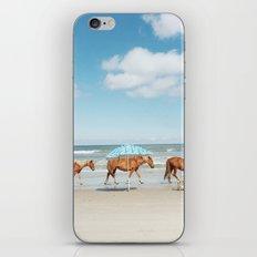 Summer Coast Horse Stride iPhone & iPod Skin