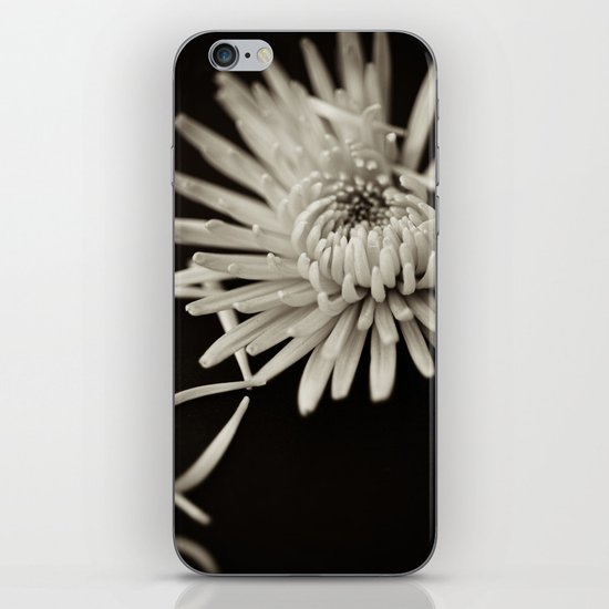 The Art of Letting Go iPhone & iPod Skin