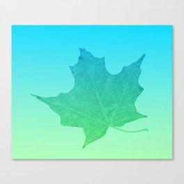 Maple leaf digital sketch on blue green gradient  Canvas Print