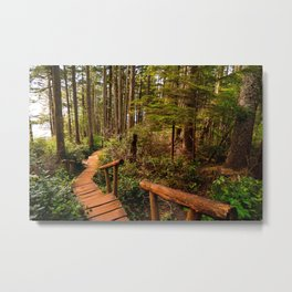 Cape Flattery Trail Metal Print