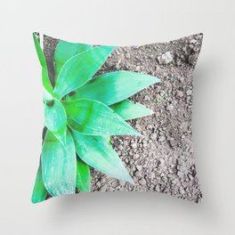 green leaf plant with sand background Throw Pillow
