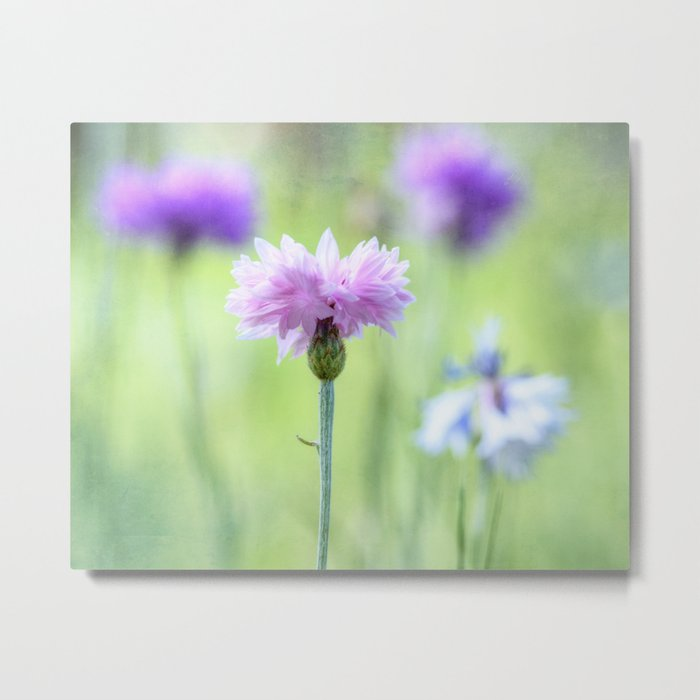 Just Touch Metal Print