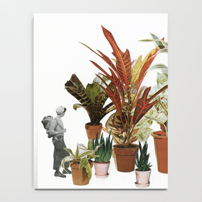 It's a Jungle Out There Notebook