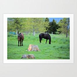Spring Pastures Art Print