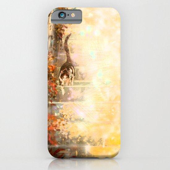 Cat's Stroll iPhone & iPod Case