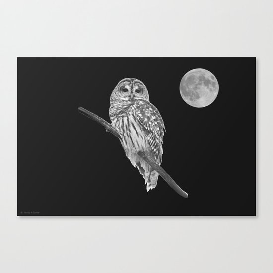 Owl, See the Moon (bw) Canvas Print