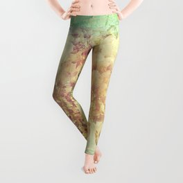 Wisteria dreams Leggings