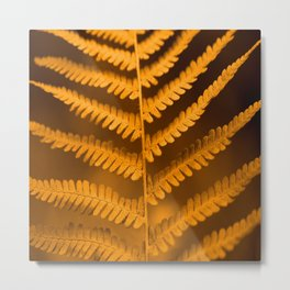 Fern Leaf in Fall Color Autumn Scene #decor #society6 #buyart Metal Print