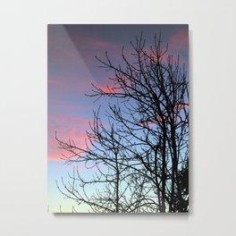 Skyscapes Pink Skies Silhouette Metal Print